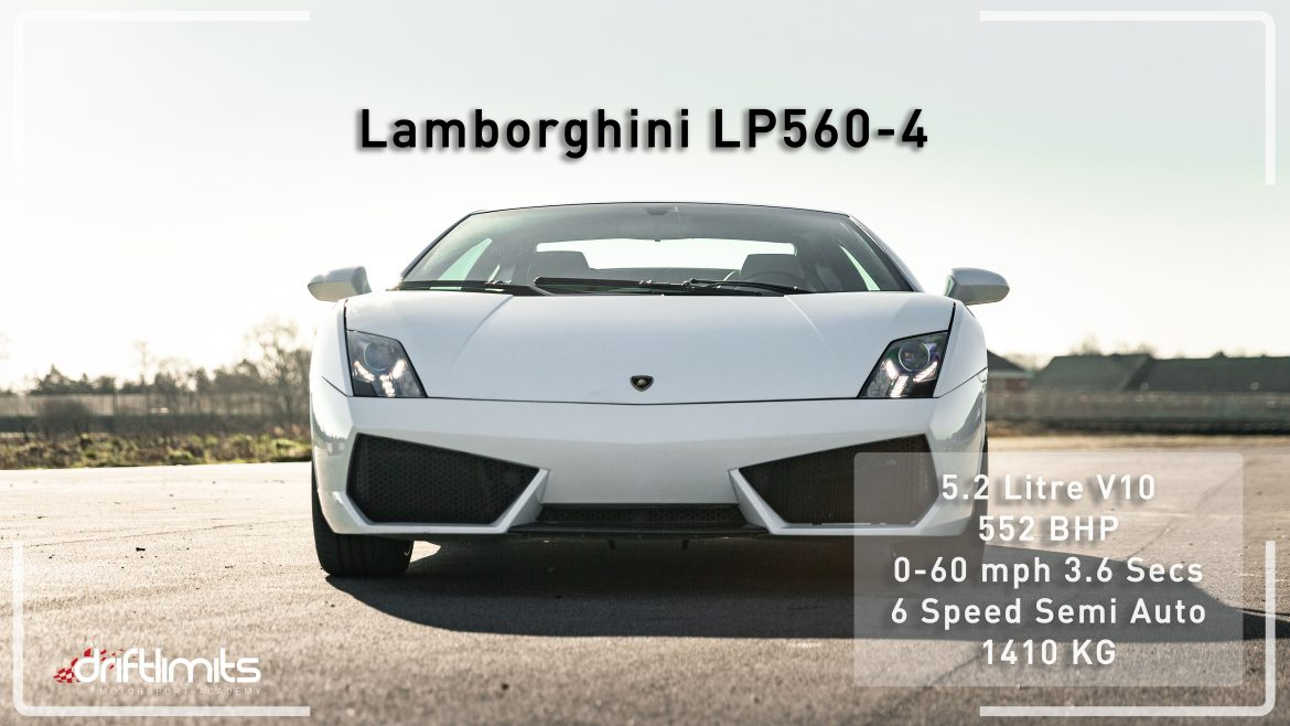 White Lambo Fact Sheet