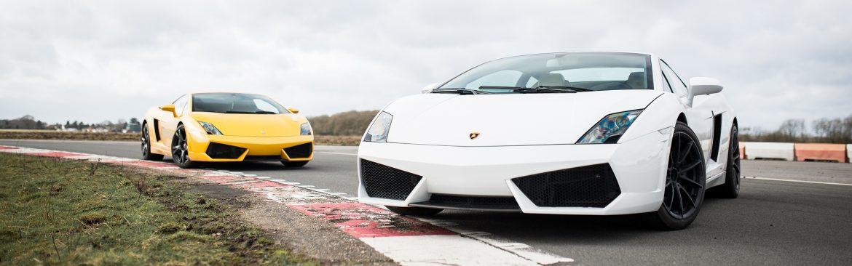 White-and-Yellow